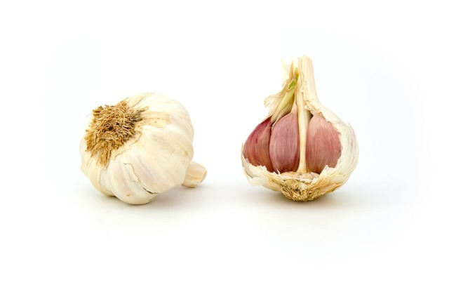 anti- ageing garlic