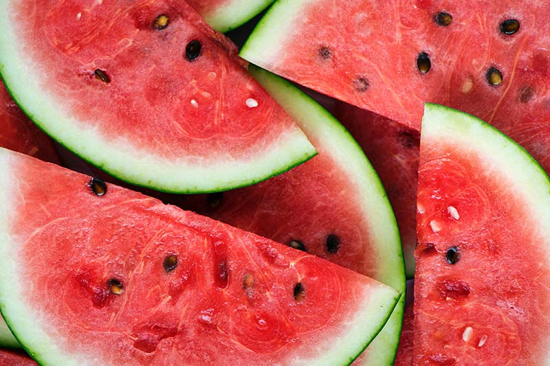 anti- ageing watermelon