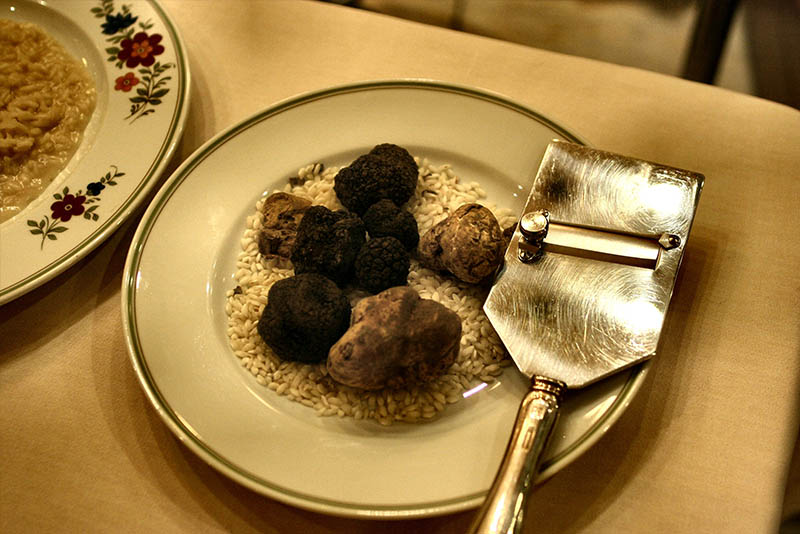 truffle Children's day